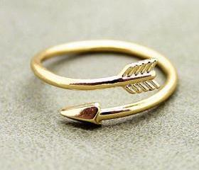 The arrow ring openi..
