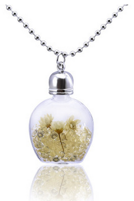 Essential oil bottle glass silver flower lovers Necklace